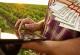 Αιτήσεις ΟΣΔΕ Online για Ενιαία Ενίσχυση 2015, Αιτήσεις για επιδότηση ελαιολάδου