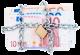 Εγγυημένο Εισόδημα Πληρωμή, Καταβολή χρημάτων, Πληρωμές, 2015