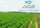 Επιδοτούμενο πρόγραμμα έως 10.000 ανά αγρότη από την Αποστολή